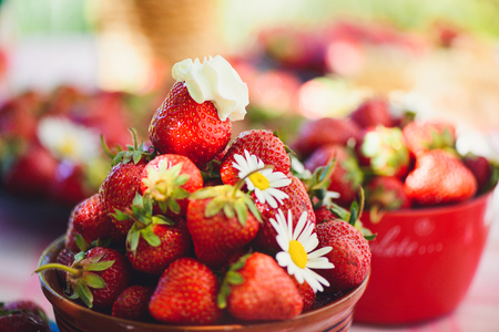 A fresh strawberry in a bowl on a table in a summer garden is adorned with chamomile flowers with a low key stage. Healthy eating and freshness.