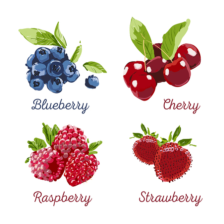 Berry Hand drawn vector set. Berry colorful marker illustration. Raspberry, strawberry, cherry, blueberry on white background with calligraphic text. Dessert Healthy farm natural product. Ilustracja