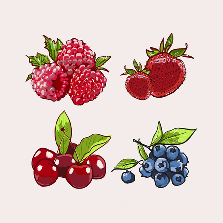 Hand drawn vector set Letterig summer berry colorful marker illustration. Berries engraving doodle sketch etch line. Raspberry, strawberry, cherry on white background. Dessert farm natural product. Иллюстрация