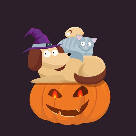 Cute Halloween pets, cat, hamster and dog in a witch hat sitting on each other and a Halloween pumpkin with frightened faces. Flat cartoon style illustration.