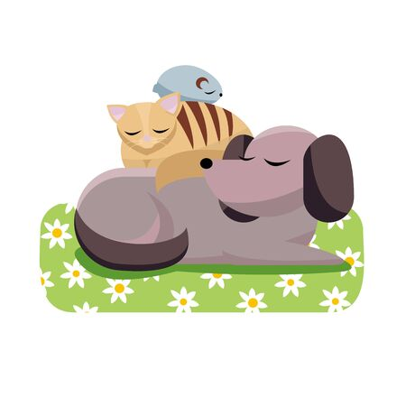 Flat cartoon illustration cat and chinchilla sleeps comfortably on dog. Sweet dreams of furry friends. Cute best friends sleeping dog, cat, hamster on daisy dog mat on white background