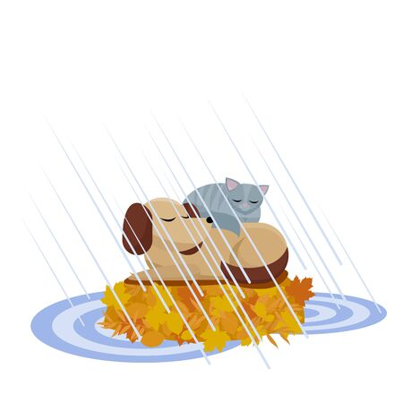 Flat cartoon illustration cat sleeps on dog to make it warmer. Lovely animals help to warm each other in the rain, sleeping on yellow leaves armful among the puddle. Autumn picture with friends