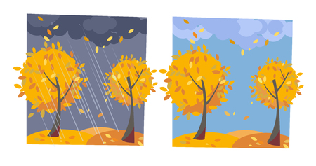 Autumn yellow trees with flying leaves. Set of two non-parallel pictures with a view of good sunny weather and rainy evening. Flat cartoon illustration. Trees with round crown of classic leaves