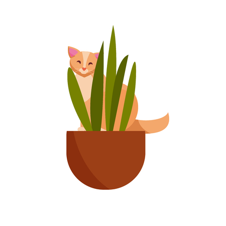 Guilty cat flat vector color character. Cute naughty playful cat eat, damage houseplats. Kitten play with house plants, flower pots. Cute at playing with home flowers.Isolated cartoon illustrations. Фото со стока