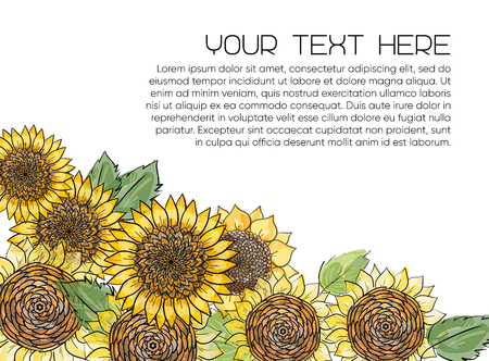 Horizontal banner with yellow sunflowers hand drawn in sketch style on white background. Natural vintage greeting card with place for text. Vector illustration. Çizim
