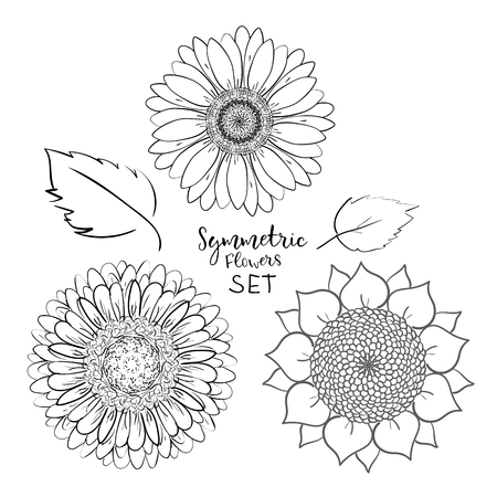 Floral symmetric summer flowers set. Hand drawn Doodle flower. Outline Vector illustration on white background. Collection for pattern, template, banner, posters, invitation and greeting card design Çizim