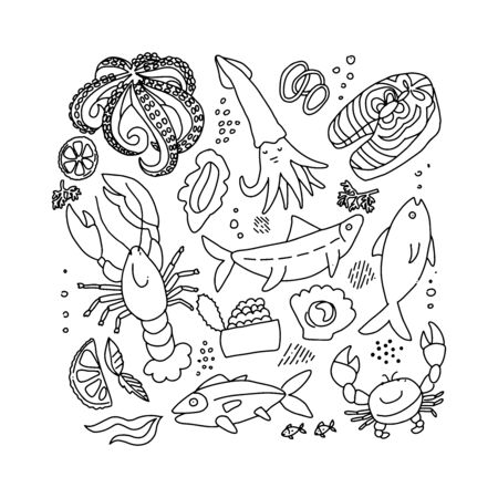 Set of outline black and white doodle hand drawn rough simple seafood sketches. Vector illustration on white background. Fish slices, lobster, crab, squid for web design,textile prints, posters, menu.
