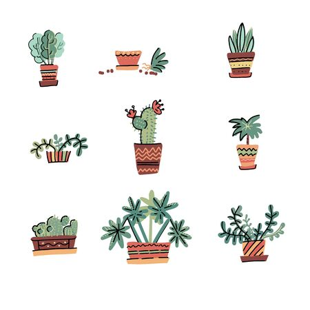 Set of Adorable Miniature Plants Design Elements. Hand drawn contained house plants. Scandinavian style illustration, modern elegant home decor. Vector print isolated on white background