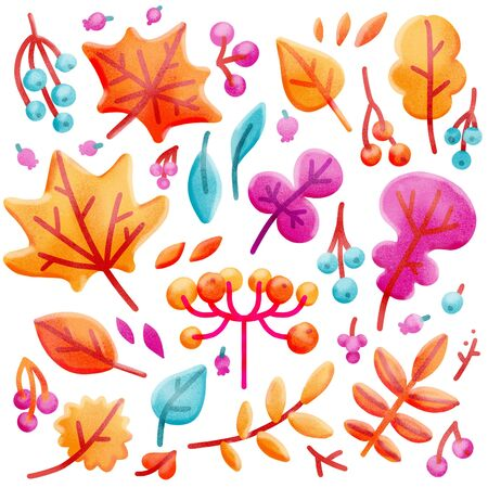 Set of bright colorful autumn leaves and berries. Isolated on white background. Simple cartoon hand drawn flat style illustration with textures for kids. Stock Photo