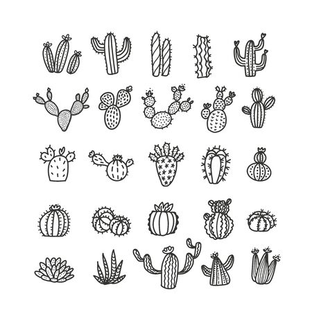 Set of cacti in trendy mono line style - art deco. It can be used as a stamp, postcard or print. Outlined vector cactuses illustration. Desert flowers withoup pots.