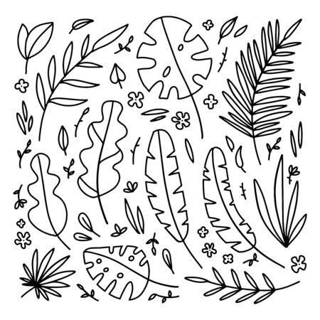 Big Floral Set of black hand drawn palm leaves, branches isolated on white. Collection of flourish elements for design. Vector doodle illustration