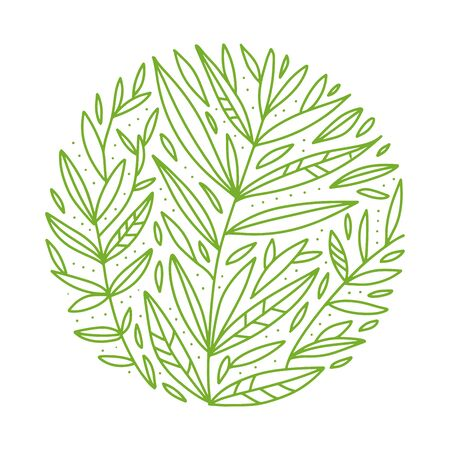 Green foliage. Vector botanical round sketch of tea buch, branch, leaves on white background. Outlined design in circle. Hand drawn vintage illustration. Organic drink.