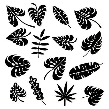 Set of palm leaves silhouettes isolated on white background. Vector simple flat hand drawn illustrations