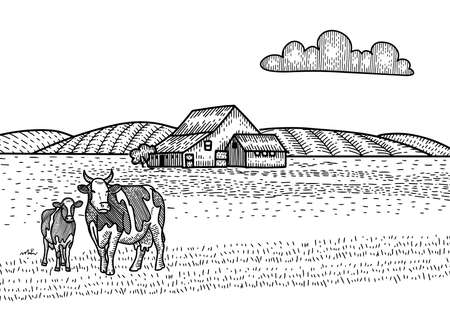 Cow and calf grazing on meadow. Farm Barn on the background. Hand drawn sketch illustration in engraving style. Countryside landscape. Ilustração