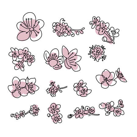 Japanese sakura buds set. Cherry blossom flowers in one line art style. Black and white doodle with abstract pink shapes. Spring element collection.