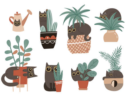 Guilty cat characters set. Cute naughty playful cats damage houseplants. Black Kitten play with house plants in flower pots. Isolated vector hand drawn scandinavian cartoon illustration.