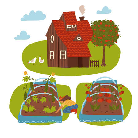 Farm Scene with Country house, Female Farmer, Summer Rural Landscape and garden bed. Gardening and Farming Concept. Cartoon Flat Vector Illustration