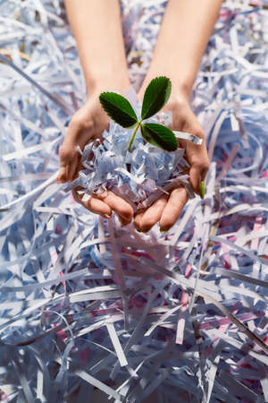 Hands holding a plant growing from cutted pieces of paper. Ecology and recycle concept.