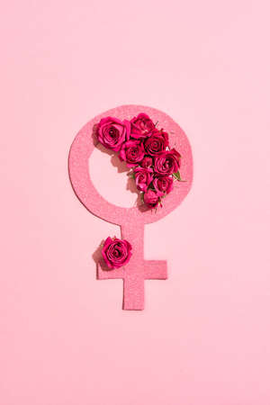 Gender sign of the girl lies on a pink background 免版税图像