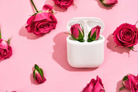 Present for Womens Day. Two little pink roses in charging case for earphones over pink background with fresh pink roses