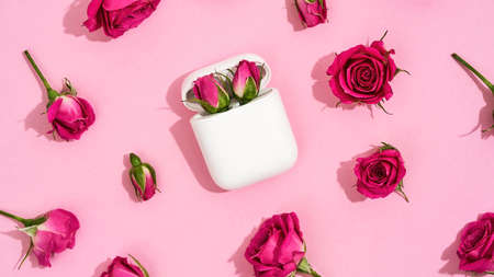 Top view of two little pink roses in charging case for earphones over pink background with fresh pink roses