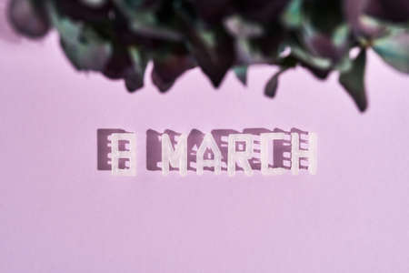 Text 8 MARCH on pastel pink background. International Womens Day