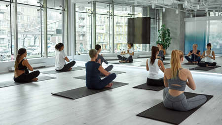 Diverse women train together practice yoga on class