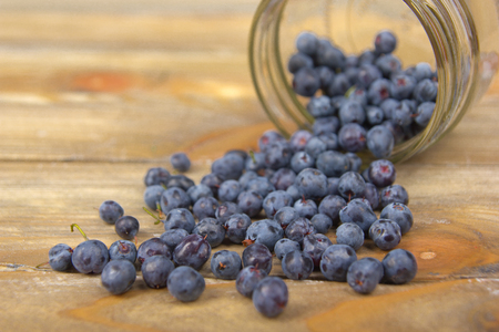 Blueberry on wooden table background, bowl of blueberries. Juniper berries spilled from a spice jar