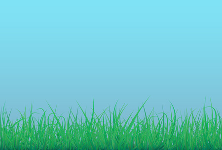 Landscape green grass and blue sky stock illustration.