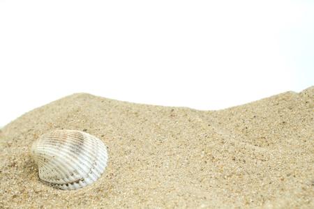 Sable de mer avec des restes de coquillages et fond blanc de galets. Concept de repos. Vue de dessus.