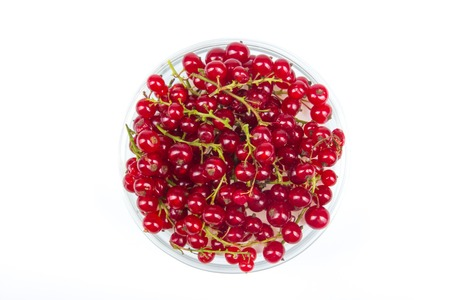 Fresh currant on plate on Isolated white background. Berries Stockfoto