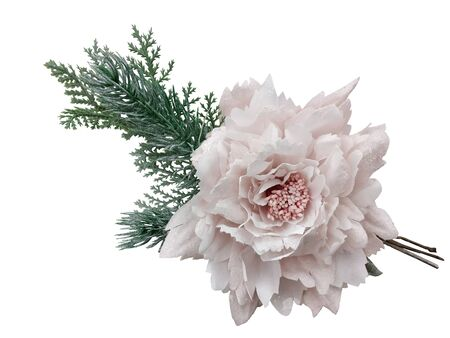 Christmas decor, flowers, decorations on Christmas trees on white background.