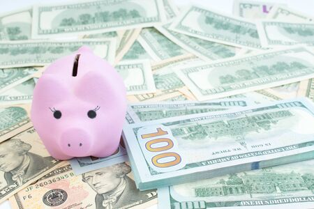 Pink piggy bank, dollars on a white background. savings concept, fundraising.