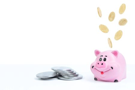 Pink piggy bank, dollars on a white background. savings concept, fundraising. coins Banco de Imagens