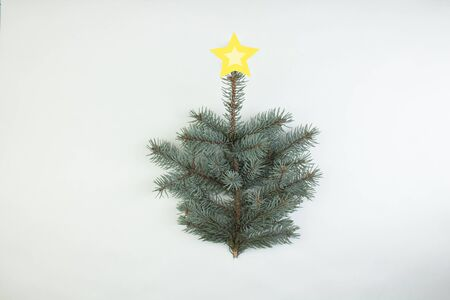 Minimalistic Christmas tree made of evergreen plant on white background. New Year concept. Flat lay. Banco de Imagens