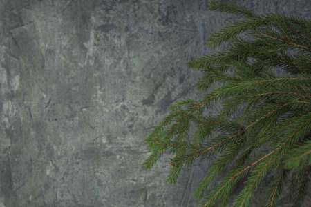 Christmas composition of fir branches and berries of viburnum on a concrete background. Banco de Imagens