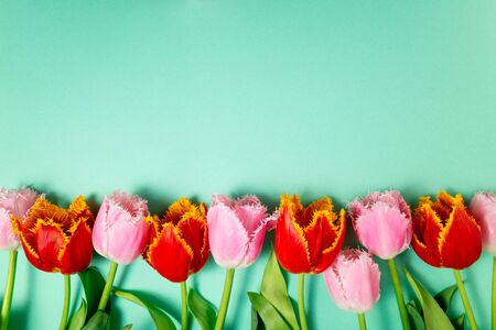 Spring flowers. Bouquet of tulips flowers on color background. Holidays, Easter, 8 march, happy birthday, anniversary, wedding, congratulations card concept. Copy space 免版税图像