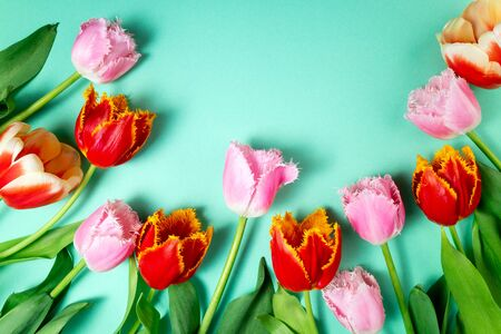 Bouquet of tulips flowers on color festive background. Spring flowers on floral card flat lay. Greeting card, holidays concept. Copy space, top view 免版税图像