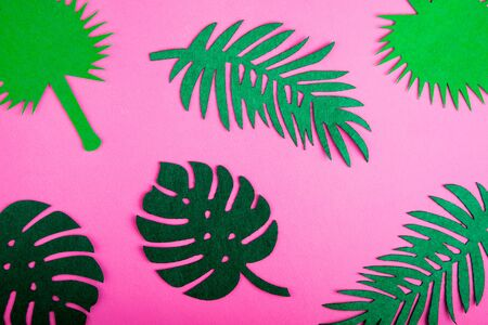 Abstract summer background. Summer trendy background with palm leaves on pink. Top view