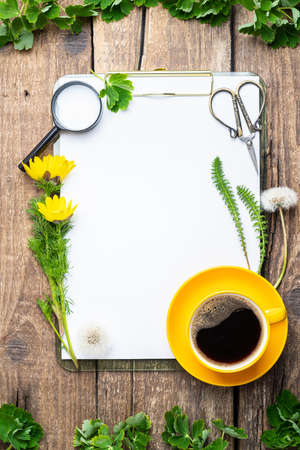 White paper blank, cup of coffee, flowers, forest plants, scissors, magnifier on old wooden background. Ecology, study botany, zero waste, wedding, invitation, botanical, floral concept. Copy space, flat lay