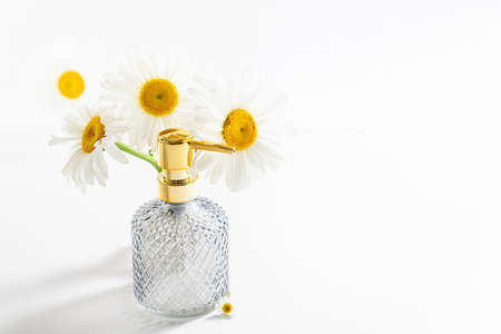 Beautiful chamomiles or daisy flowers and cosmetic product in bottle on white. Floral composition with perfume or essential oils. Organic cosmetology, perfume, cosmetics, body care, herbal, beauty concept