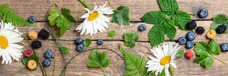 Forest berries pattern on rustic wooden background. Banner made of berry fruits and chamomile flowers. Summer concept. Flat lay Banque d'images