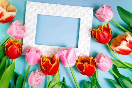 Bouquet of tulips flowers and frame on blue. Spring flowers on floral pattern flat lay. Greeting card, 8 March, Easter, holidays concept. Flowers background