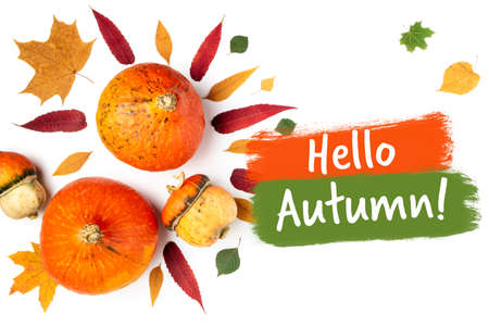 Autumn background. Pumpkins and leaves on white. Hello autumn, thanksgiving day, halloween concept. Flat lay, top view