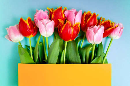 Floral pattern with spring flowers. Bouquet of tulips flowers on blue background. Easter, Valentines, 8 March, happy birthday, holidays concept. Copy space