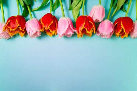 Floral pattern with bouquet of tulips flowers on blue background. Spring flowers. Greeting card, Happy Easter, Valentine's Day, 8 March, holidays concept. Top view, copy space