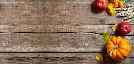 Autumn composition for Thanksgiving day. Pumpkin, fruits apples, floral and seasonal decoration on rustic wooden table. Autumn background. Long format with copy space