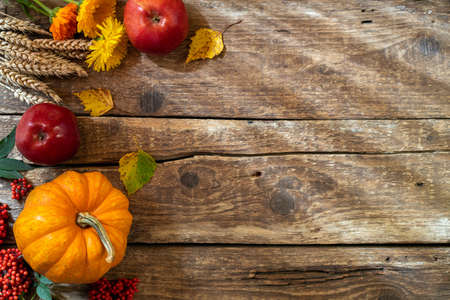 Autumn background for Thanksgiving day. Pumpkin, floral and seasonal decoration on rustic wooden table. Fall with compositions copy space. Top view