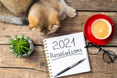 New year resolutions 2021 on desk. 2021 resolutions with notebook, cute cat, coffee cup, eyeglasses, succulent on wooden background. Goals, plan, strategy, list, idea, cozy home concept Foto de archivo