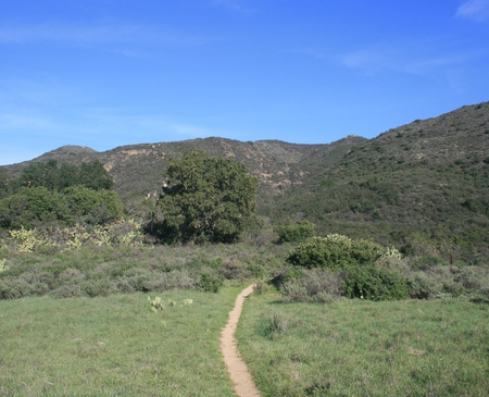 orange county: Dirt trail leading through a green field toward mountains, Orange County, California